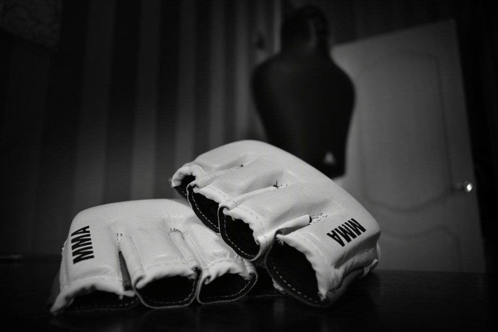 gloves, fighter, fight